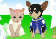 Cat And Dog Wedding Game