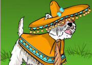 Mexican Dog Dress Up
