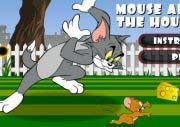 Tom And Jerry Mouse About House